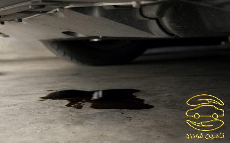 بررسی نشتی خودرو